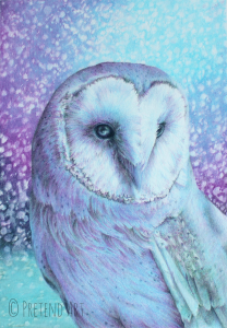 Owl in Four Colors