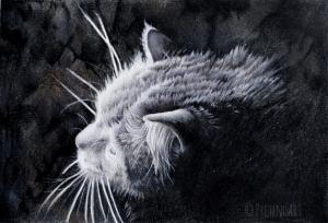 Pet Portrait: Rajah